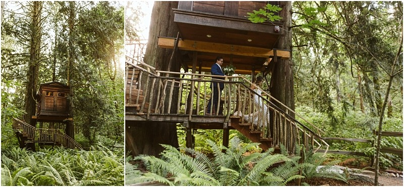 Wedding Venue Highlight: TreeHouse Point